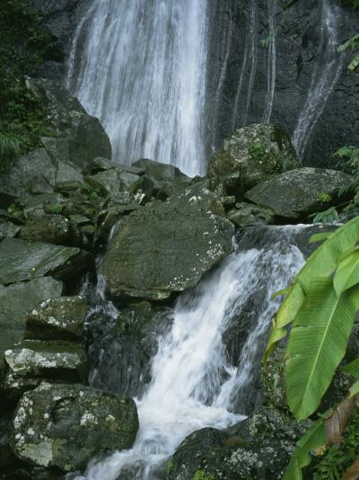 A Waterfall in El Yunque, Puerto Rico-Taylor S^ Kennedy-Photographic Print