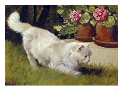 A White Persian Cat with a Ladybird-Cecil Aldin-Giclee Print