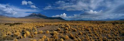 A Wide-Angle View of Altiplano, Chile-Barry Tessman-Photographic Print