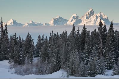 A Winter Forest Scene with the Teton Range in the Distance-Greg Winston-Photographic Print