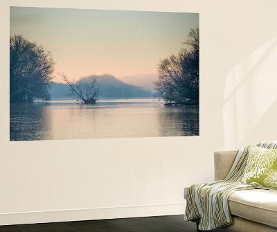 A Winter Morning with Canada Geese Along the Potomac River Inside the Beltway-Irene Owsley-Wall Mural