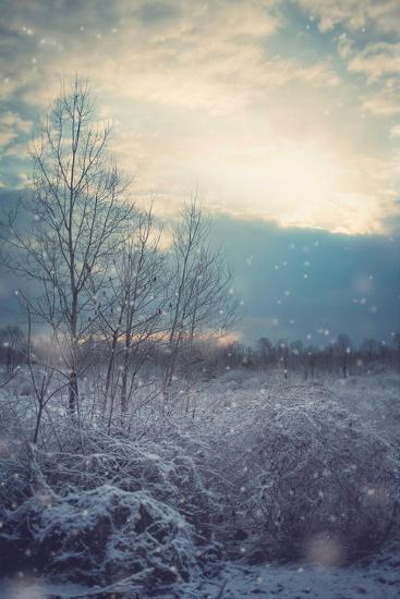 A Winter's Day-Kelly Poynter-Premium Giclee Print