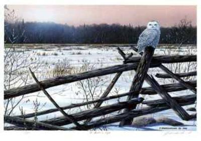 A Winter's Light-J. Vanderbrink-Collectable Print