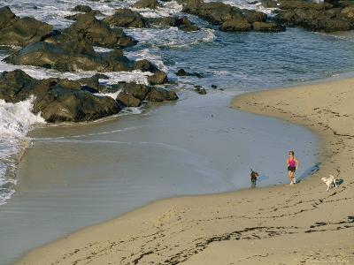 A Woman and Her Two Labrador Retrievers Run Along a Rocky Shoreline-Roy Toft-Photographic Print