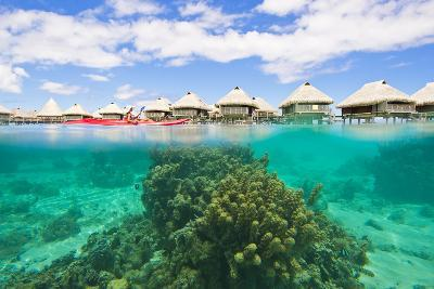 A Woman Kayaking over Coral Heads at a Resort with Over-The-Water Bungalows-Mike Theiss-Photographic Print