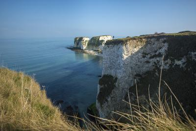 A Woman Looks Out at Old Harry Rocks at Studland Bay in Dorset on the Jurassic Coast-Alex Treadway-Photographic Print