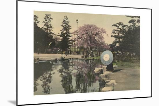 A Woman Observes the Reflection of Cherry Blossoms in a Small Pond-Kiyoshi Sakamoto-Mounted Photographic Print