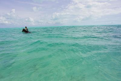 A Woman Riding a Horse in Turquoise Caribbean Waters, Near Shore-Mike Theiss-Photographic Print