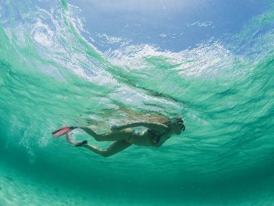 A Woman Snorkels under the Waves-Barry Tessman-Photographic Print