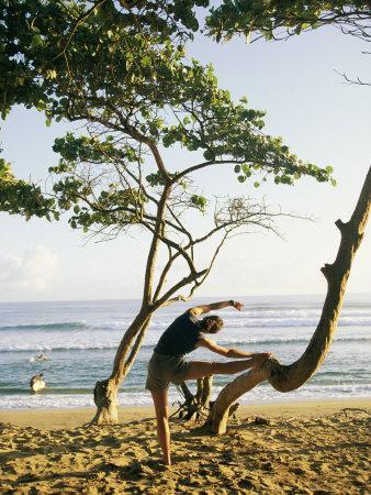 https://imgc.artprintimages.com/img/print/a-woman-stretches-her-body-on-a-small-tree-at-a-sandy-beach_u-l-p3kdor0.jpg?p=0
