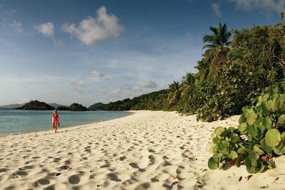 https://imgc.artprintimages.com/img/print/a-woman-walks-on-the-beach-at-trunk-bay_u-l-pwdbvw0.jpg?p=0