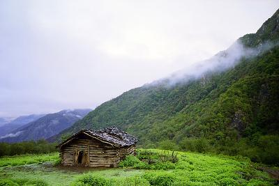 A Wooden Shepherd's Hut in a Small Green Forest Meadow in the Alborz Mountains of Iran-Babak Tafreshi-Photographic Print