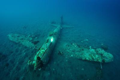 A World War Ii Japanese Zero Airplane Sunken Near the Willaumez Peninsula on New Britain Island-David Doubilet-Photographic Print