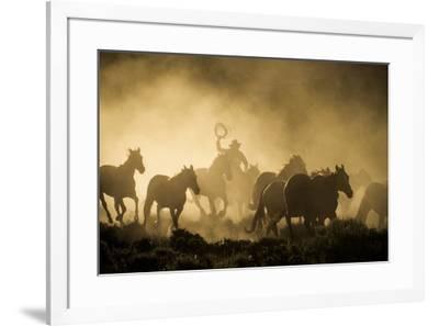 A wrangler herding horses through backlit dust cloud in golden light of sunrise-Sheila Haddad-Framed Premium Photographic Print