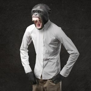 Annoyed Monkey Shouting On Black Background by Aaron Amat