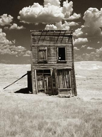 Abandoned Shack in Field by Aaron Horowitz