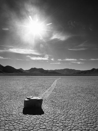 Rock at Racetrack Playa by Aaron Horowitz