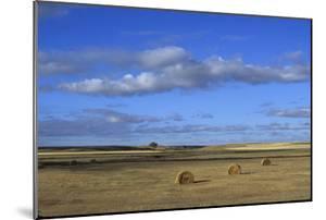 Hay Bales in a Field by Aaron Huey
