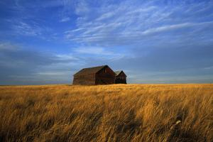 Old Wooden Barns in a Field by Aaron Huey