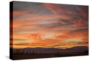 Sonoran Sunset by Aaron Matheson