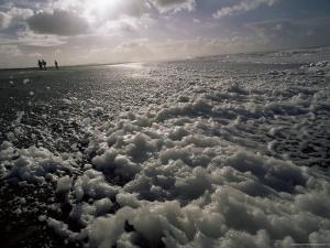 Foam off the Pacific Ocean on Coast Near Westport, Washington State, North America by Aaron McCoy