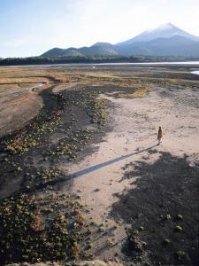 Man Walking on Dry Lake Bed with Llaima Volcano in Distance, Conguillio National Park, Chile by Aaron McCoy