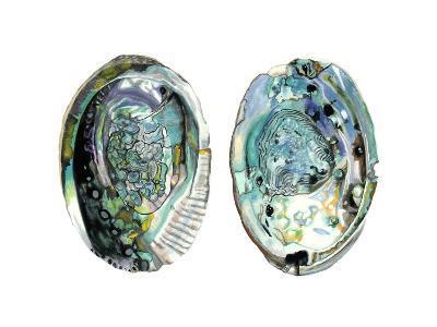 Abalone Shells I-Naomi McCavitt-Art Print