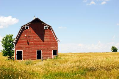 Abandoned Farm in Nebraska--Premium Photographic Print