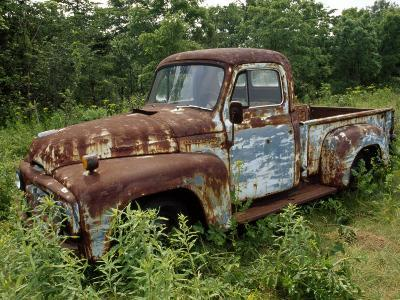 Abandoned Truck Rests in a Patch of Overgrown Grasses and Bushes-Paul Damien-Photographic Print