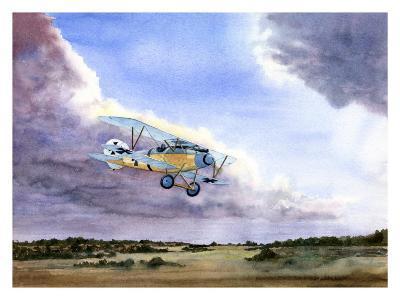 Abatros-Douglas Castleman-Giclee Print