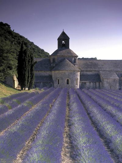 Abbey De Senanque, Provence, France-Marcel Malherbe-Photographic Print