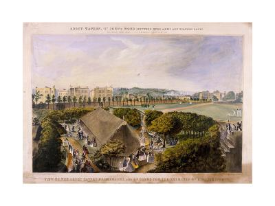 Abbey Tavern, St John's Wood, London, C1870-James Barnett-Giclee Print