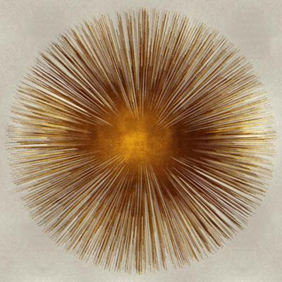 Bronze Sunburst I by Abby Young