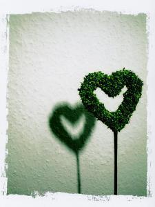 A Green Love Sign with its Shadow by Abdul Kadir Audah