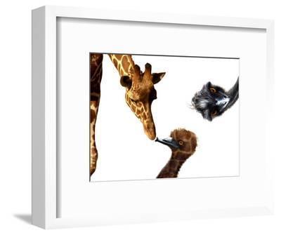 Giraffe, Emu and Offspring