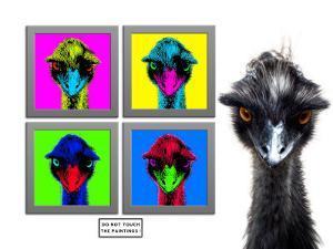 Staring Emus by Abdul Kadir Audah