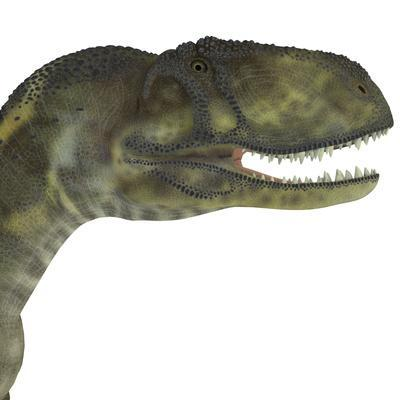 https://imgc.artprintimages.com/img/print/abelisaurus-portrait_u-l-pyb4q50.jpg?p=0
