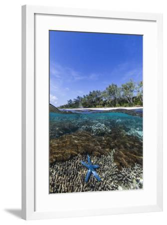 Above and Below View of Coral Reef and Sandy Beach on Jaco Island, Timor Sea, East Timor, Asia-Michael Nolan-Framed Photographic Print
