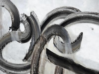 https://imgc.artprintimages.com/img/print/absolutely-obsidian-ii_u-l-q1gjvon0.jpg?p=0