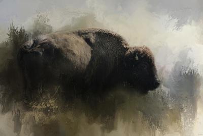 https://imgc.artprintimages.com/img/print/abstract-american-bison_u-l-q12uoxq0.jpg?p=0