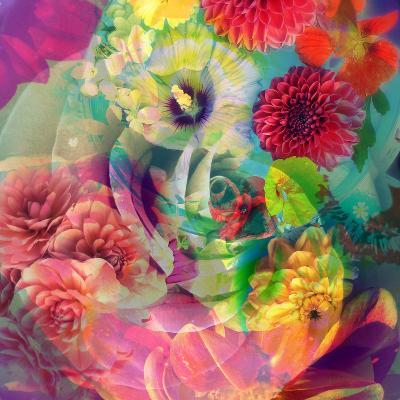 Abstract Blossoms Layered Photographs-Alaya Gadeh-Photographic Print