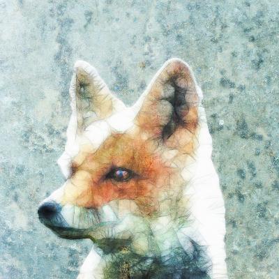 Abstract Fox-Ancello-Art Print
