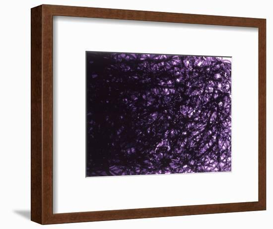 Abstract Image in Black and Purple-Daniel Root-Framed Giclee Print