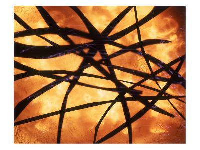 Abstract Image in Yellow and Black-Daniel Root-Giclee Print