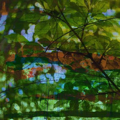 Abstract Leaf Study IV-Sisa Jasper-Photographic Print
