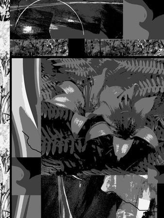 https://imgc.artprintimages.com/img/print/abstract-nature-walk_u-l-q1auzi50.jpg?p=0
