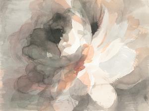 Abstract Peony