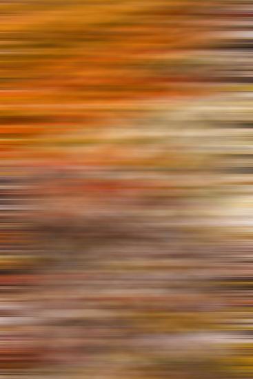 Abstract The Puckering-Katarzyna Kuban-Photographic Print