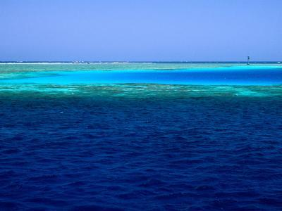 Abu Nuhas (Ships' Graveyard) Dive Site in Red Sea, Egypt-Jean-Bernard Carillet-Photographic Print