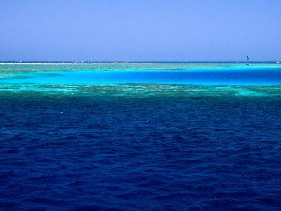 https://imgc.artprintimages.com/img/print/abu-nuhas-ships-graveyard-dive-site-in-red-sea-egypt_u-l-p3sx7a0.jpg?p=0
